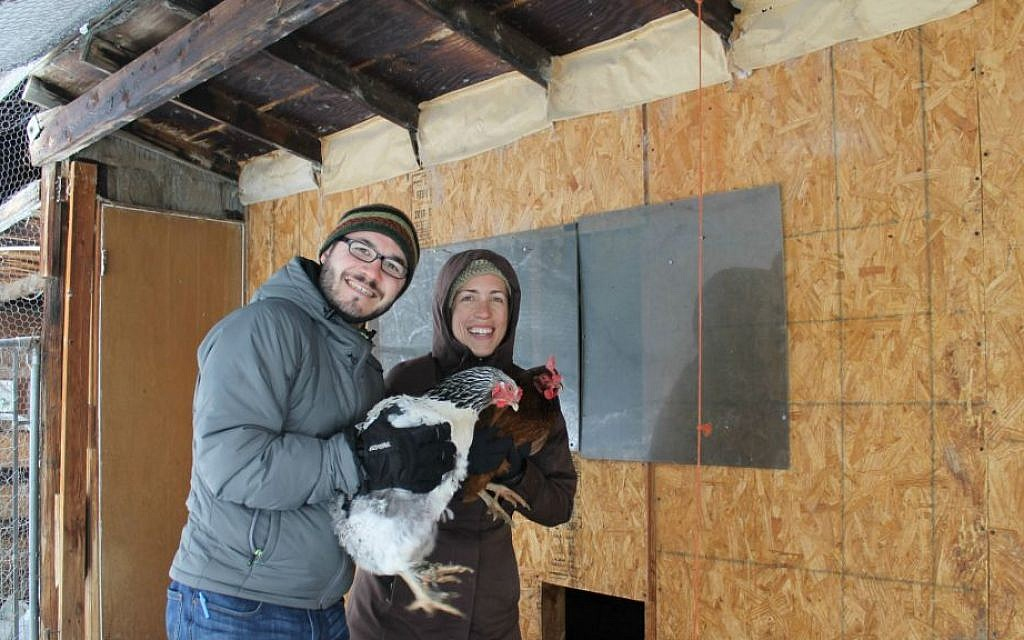 Some 40 hens and five goats are part of the co-op at the future site of the Boulder JCC, where Jonathan Lev is executive director and Becca Weaver is farm and sustainability director. (Uriel Heilman/JTA)