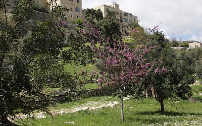Jerusalem's Hinnom Valley. (Shmuel Bar-Am)