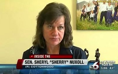 Idaho state senator Sheryl Nuxoll (photo credit: YouTube screenshot)