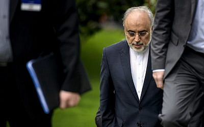 The Head of the Iranian Atomic Energy Organization Ali Akbar Salehi walks through a garden at the Beau Rivage Palace Hotel during an extended round of talks April 2, 2015 in Lausanne, Switzerland (AFP PHOTO/POOL / BRENDAN SMIALOWSKI)