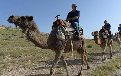 Prime Minister Benjamin Netanyahu rides a camel as he tours southern Israel with his wife Sara (not seen) and their sons Yair and Avner, on April 8, 2015 during the Jewish holiday of Passover. (Photo credit: Amos Ben Gershom/GPO)