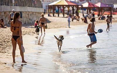 Passover is a fine time to head to the Tel Aviv beaches (Photo credit: Kfir Bolotin)