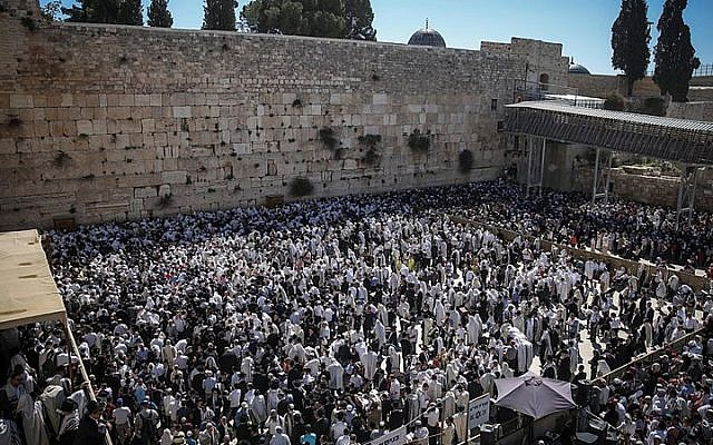 Jewish worshipers cover themselves with prayer shawls as they pray in front of the Western Wall in Jerusalem's Old City during the priestly blessing which commemorates the Israelites' hasty departure from Egypt. April 6, 2015. (Hadas Parush/Flash90)