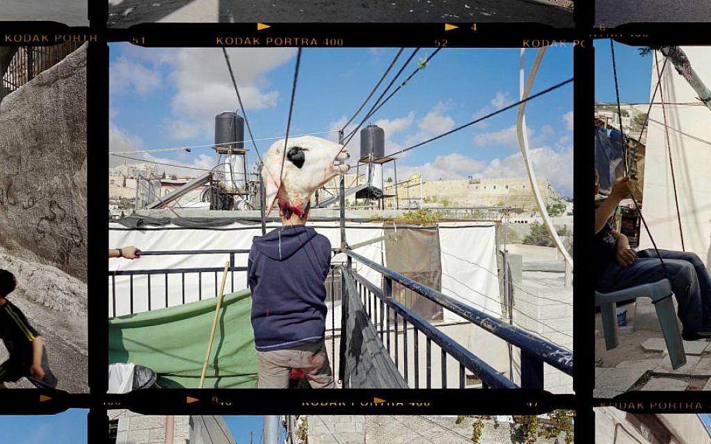 Peress, Gilles. This Place. Contact Sheet, Palestinian Jerusalem. Copyright Gilles Peress.
