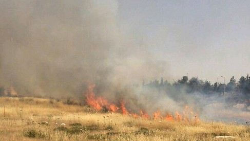 A fire near Jerusalem on Wednesday, May 27, 2015 (courtesy Fire and Rescue Authority)