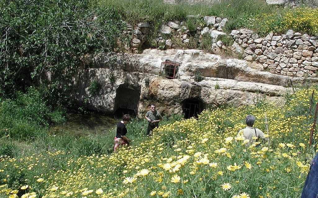 The cisterns at Ein Tzuba (photo credit: Shmuel Bar-Am)