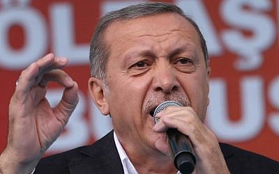 Turkish President Recep Tayyip Erdogan speaks during a rally in the Golbasi district of Ankara, June 5, 2015. (AFP/Adem Altan)