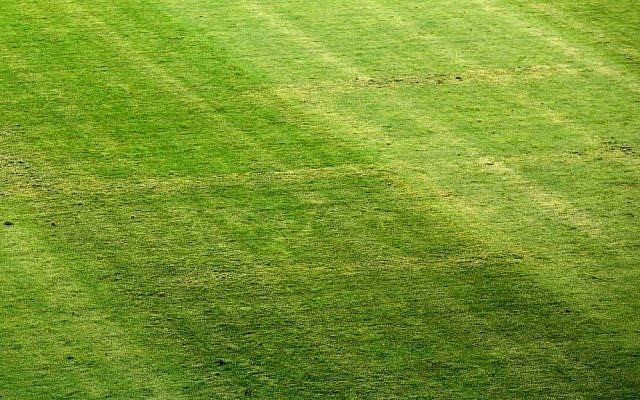 In this Friday, June 12, 2015 file photo, a big Nazi Swastika symbol is implanted on a grass pitch at a European soccer championship qualification game between Croatia and Italy, in Split, Croatia. (AP Photo/Darko Bandic, File)