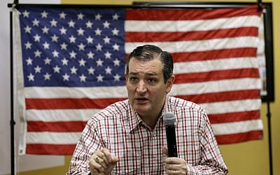 Republican presidential candidate Sen. Ted Cruz, R-Texas, speaks at the 'Celebrate the 2nd Amendment Event' in Johnston, Iowa, on June 20, 2015. (AP/Charlie Neibergall)