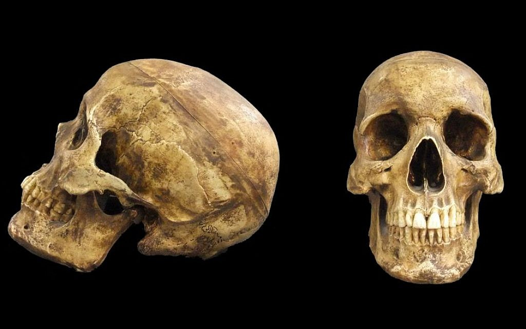 Illustrative: A skull of Homo sapiens, al-Kafza cave, Middle Paleolithic Period, ca. 85,000 years ago. (Courtesy Israel Museum)