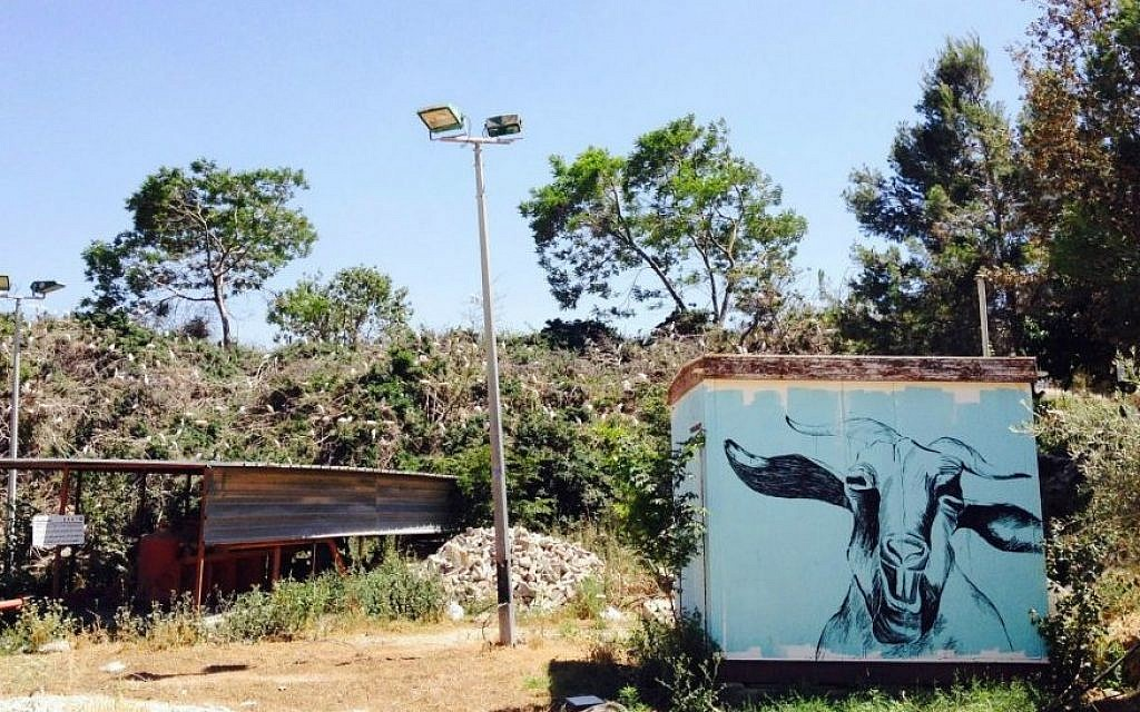 Nesting egrets and other works of art at the entrance to AMOCAH, Sakhnin's new art museum (Jessica Steinberg/Times of Israel)