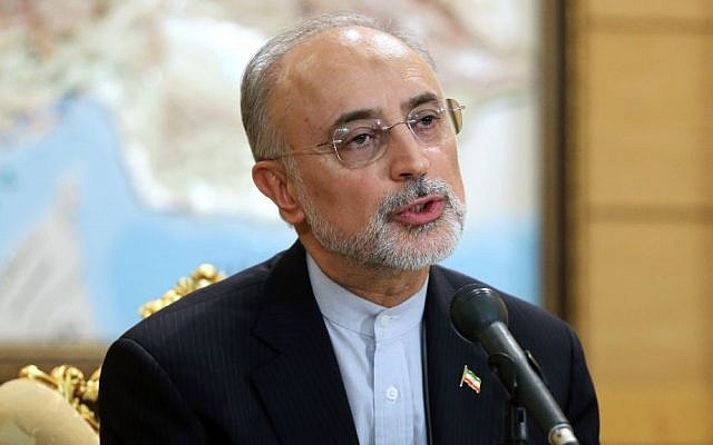 Head of Iran's Atomic Energy Organization Ali Akbar Salehi, who is also a member of Iran's nuclear negotiating team, speaks with journalists upon his arrival to Mehrabad Airport in Tehran, Iran, July 15, 2015. (AP/ Ebrahim Noroozi)