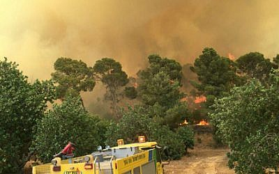 Firefighters tackle a massive wildfire in the Beit Shemesh area, July 24, 2015.  (Photo credit: Beit Shemesh Fire Department)