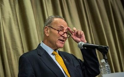US Senator Chuck Schumer (D-NY) in New York City, August 11, 2015 (Andrew Burton/Getty Images/AFP)