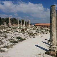 Remains of the Roman basilica at Sebastia in the West Bank (Ilan Ben Zion)