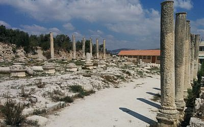 Remains of the Roman basilica at Sebastia in the West Bank (Ilan Ben Zion)