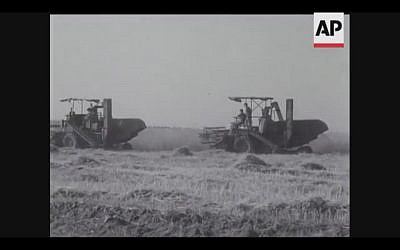 Combines roll through the fields as Israel harvests its first crops from the Negev in 1956 (Screenshot of newsreel footage from YouTube)