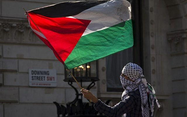 Illustrative photo of a a pro-Palestinian demonstrator waving the Palestinian flag outside the gates of Downing Street in London on September 9, 2015 (AFP PHOTO / JUSTIN TALLIS)