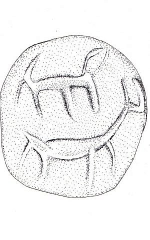 Drawing of details from a cone-shaped seal found in rubble excavated from the Temple Mount believed to date to around the 10th century BCE (Razia Richman, Temple Mount Sifting Project)