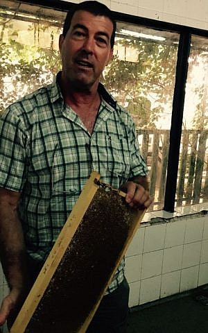 Yuval Lin has been a beekeeper since his teens (Jessica Steinberg/Times of Israel)