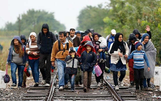 A group of migrants cross the Serbian-Hungarian border near Roszke, southern Hungary, September 10, 2015. (AP/Matthias Schrader)