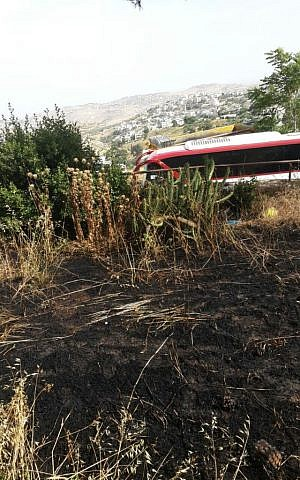 Scorched grass from a fire in Nava Segev's garden in Armon Hanatziv in Jerusalem caused by a Molotov cocktail thrown by Arab youth from the village next door. (Courtesy Nava Segev)