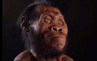 A reconstruction of Homo naledi's face by paleoartist John Gurche. On September 10, 2015, scientists say fossils found deep in a South African cave revealed the new member of the human family tree. (screen grab: YouTube)
