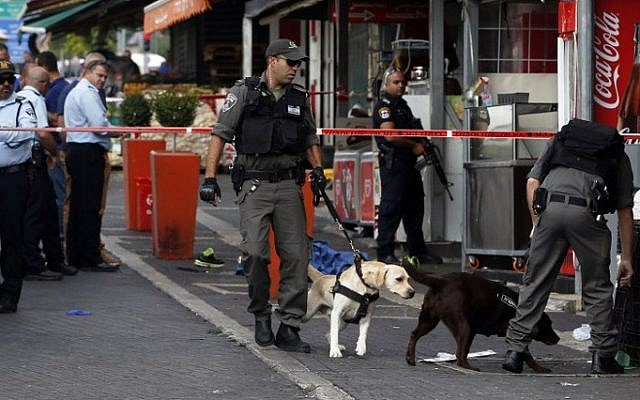 Israeli security forces use specially trained dogs to search the area where a Palestinian man carried out a stabbing attack near the old city of Jerusalem on October 10, 2015 (Ahmad Gharabli/AFP)