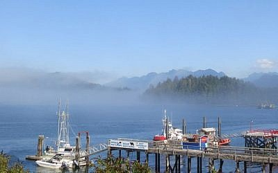 Fog around Tofino, Canada, in 2014. (CC BY Ruth Hartnup, Flickr)