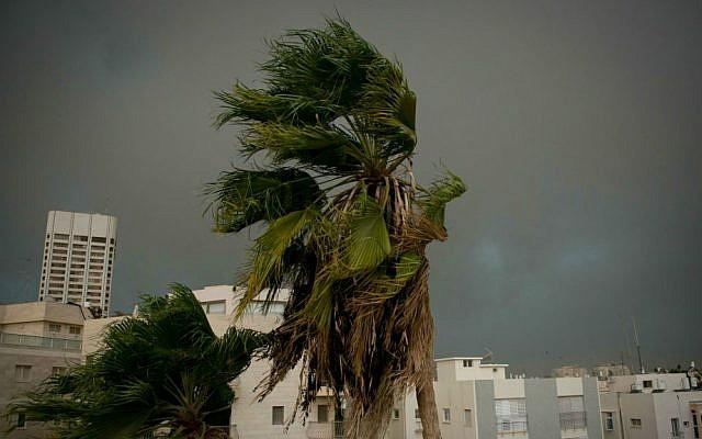 Heavy rain and strong winds batter Tel Aviv, October 25, 2015. (Ben Kelmer/Flash90)