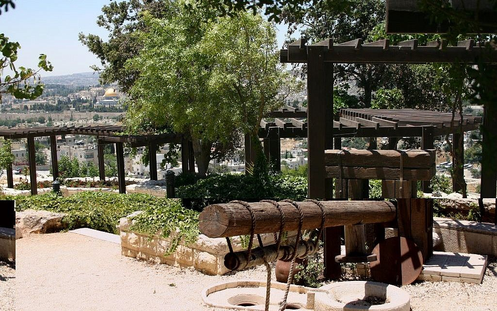 The biblical garden at Brigham Young University's Jerusalem Center (Shmuel Bar-Am)