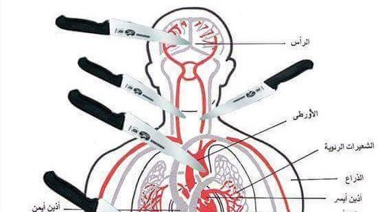 An anatomical chart posted on Facebook by Gazan Zahran Barbah on October 8, showing which parts of the body to aim for when stabbing a victim. (Courtesy of MEMRI)
