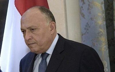 Egyptian Foreign Minister Sameh Shoukry on October 30, 2015 (Brendan Smialowski/AFP)