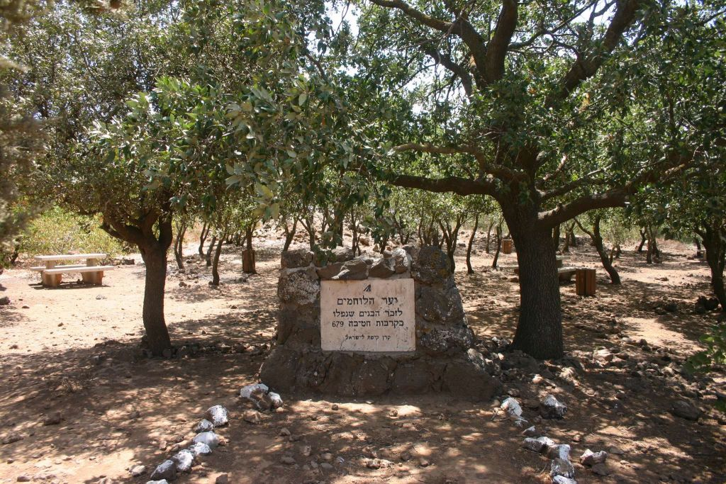 Brigade 679 memorial (Shmuel Bar-Am)