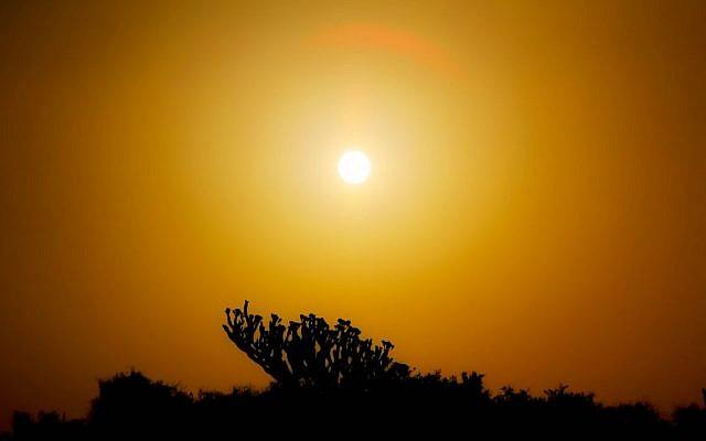 A hot desert sun (Flickr/Brenmna/CC BY 2.0)
