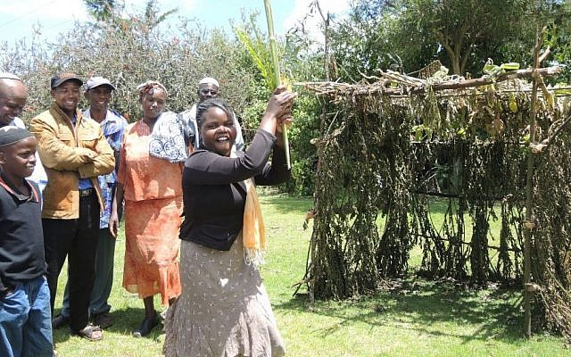 Shoshana Wanjiru, the oldest daughter of Ruth and Yosef, shakes the lulav and etrog for the first time during Sukkot in October 2015. (Melanie Lidman/Times of Israel)