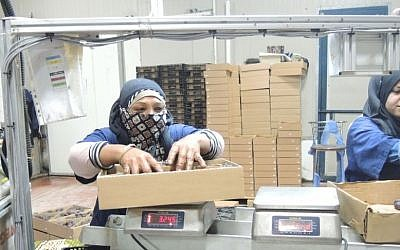 Two Palestinian woman pack dates at a packing plant on November 11, 2015 in the Jordan Valley region of the West Bank. Under new EU labeling guidelines, if these dates are exported to the EU they will need to be labeled as 'products from the West Bank (Israeli settlement).' (Melanie Lidman/Times of Israel)