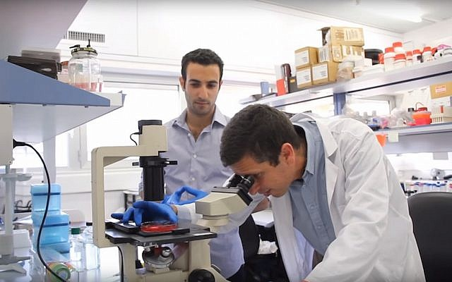 Students in the Hebrew University's BioDesign program develop a new imaging technique to reduce the risk of injury during gallbladder removal. (The Hebrew University of Jerusalem)