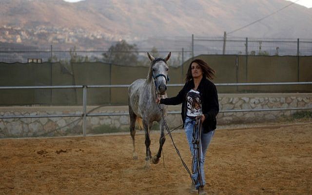 Israeli Druze horsewoman and trainer Rajaa Kheir leads a horse on September 17, 2015 at her ranch in the Druze town of Majdal Shams, in the southern foothills of Mount Hermon. (AFP PHOTO/JALAA MAREY)