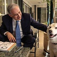 Prime Minister Benjamin Netanyahu with his dog Kaia at the PM's residence in Jerusalem in December, 2015. (Facebook)