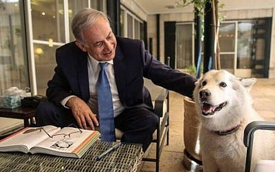 File: Prime Minister Benjamin Netanyahu with his dog Kaia at the PM's residence in Jerusalem in December, 2015. (Facebook)