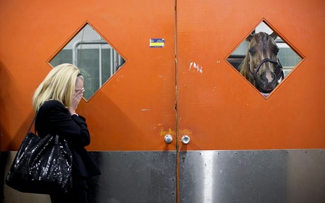 In this Wednesday, Nov. 25, 2015 photo, a horse owner waits outside the clinic as veterinarians examine her horse at the Hebrew University's Koret School of Veterinary Medicine in Rishon Lezion, Israel. (AP Photo/Oded Balilty)