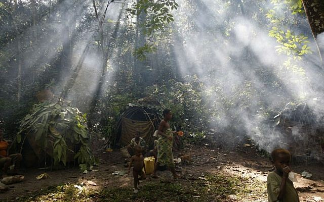 In this Sunday, March 21, 2010 file photo, shafts of sunlight filtering through the forest canopy strike smoke from fires burning outside family huts at an Mbuti pygmy hunting camp in the Okapi Wildlife Reserve outside the town of Epulu, Congo. (AP Photo/Rebecca Blackwell,File)