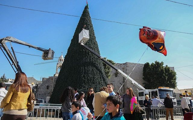 A giant Christmas Tree being placed during Christmas preparations at Nativity Church Square in Bethlehem on November 30, 2015. (Flash90)