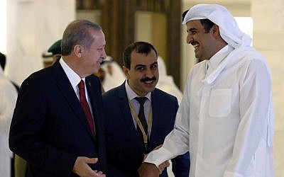 Turkey's President Recep Tayyip Erdogan and Qatar's Emir Tamim bin Hamad Al Thani speak during a ceremony in Doha, Qatar, December 2, 2015. (AP/Yasin Bulbul, Presidential Press Service, Pool)