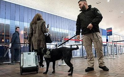 Transportation Security Administration K9 handler Tommy Karathomas and his explosive detection dog Buddy perform a demonstration at LaGuardia Airport on January 20, 2016 in the Queens Borough of New York City.  (Bryan Thomas/Getty Images/AFP)