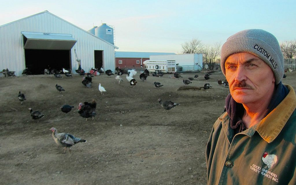Frank Reese, owner of the Good Shepherd Poultry Ranch in Kansas. (Victor Wishna/JTA)