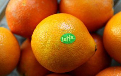 Israeli grown Jaffa Oranges. (GPO)