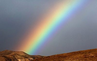 A rainbow is seen after heavy rain in the Judean Desert, on January 1, 2016. (Yossi Zamir/Flash90)