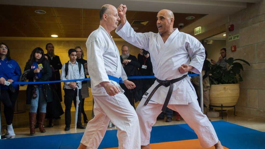 MKs Hamad Amar (Joint Arab List, right) and Tzachi Hanegbi stage a karate contest at the Knesset's 50th anniversary celebrations, January 19, 2016. (Yonatan Sindel/Flash90)